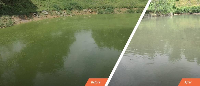 bg-river-2-1280x550-2.jpg